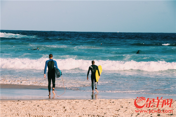 邦迪海滩是澳大利亚具历史的冲浪运动中心.jpg