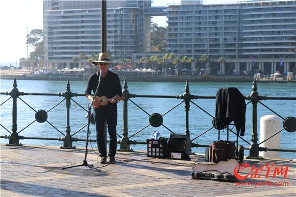 音乐为早晨的悉尼增添了活力.jpg