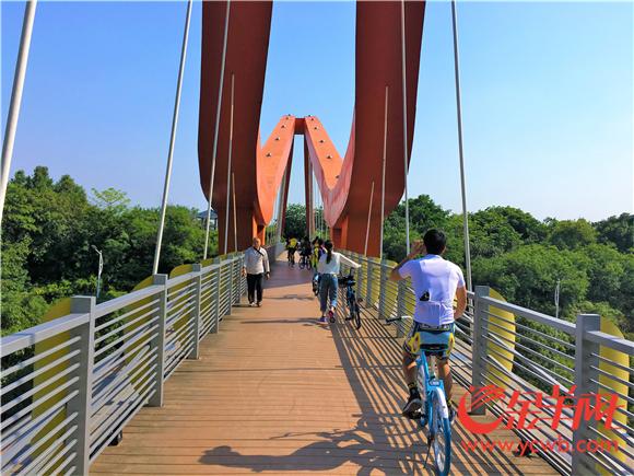 4、市民在绿道骑行 图片由黄埔区住房和城乡建设局提供.jpg