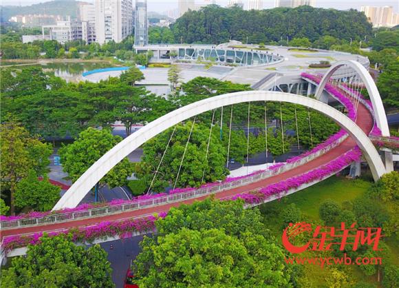 1、黄埔科学城空中绿道 图片由黄埔区住房和城乡建设局提供.png