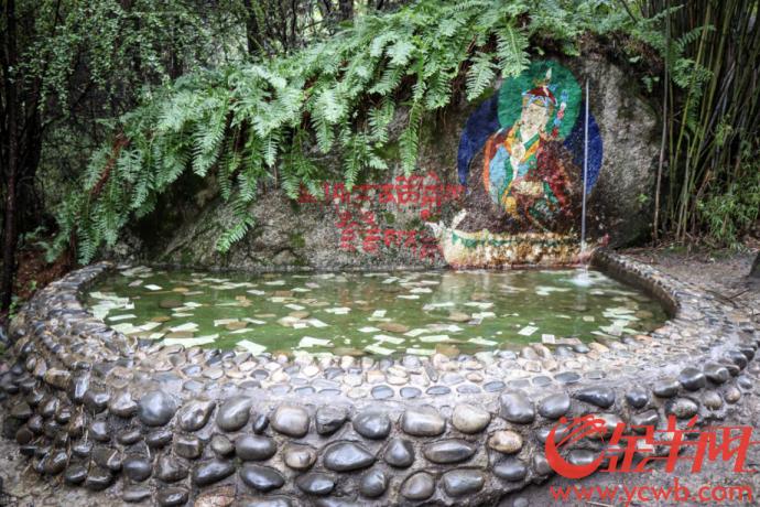 生態林芝:嘆享深邃綠意,聆聽古老傳説1214.png